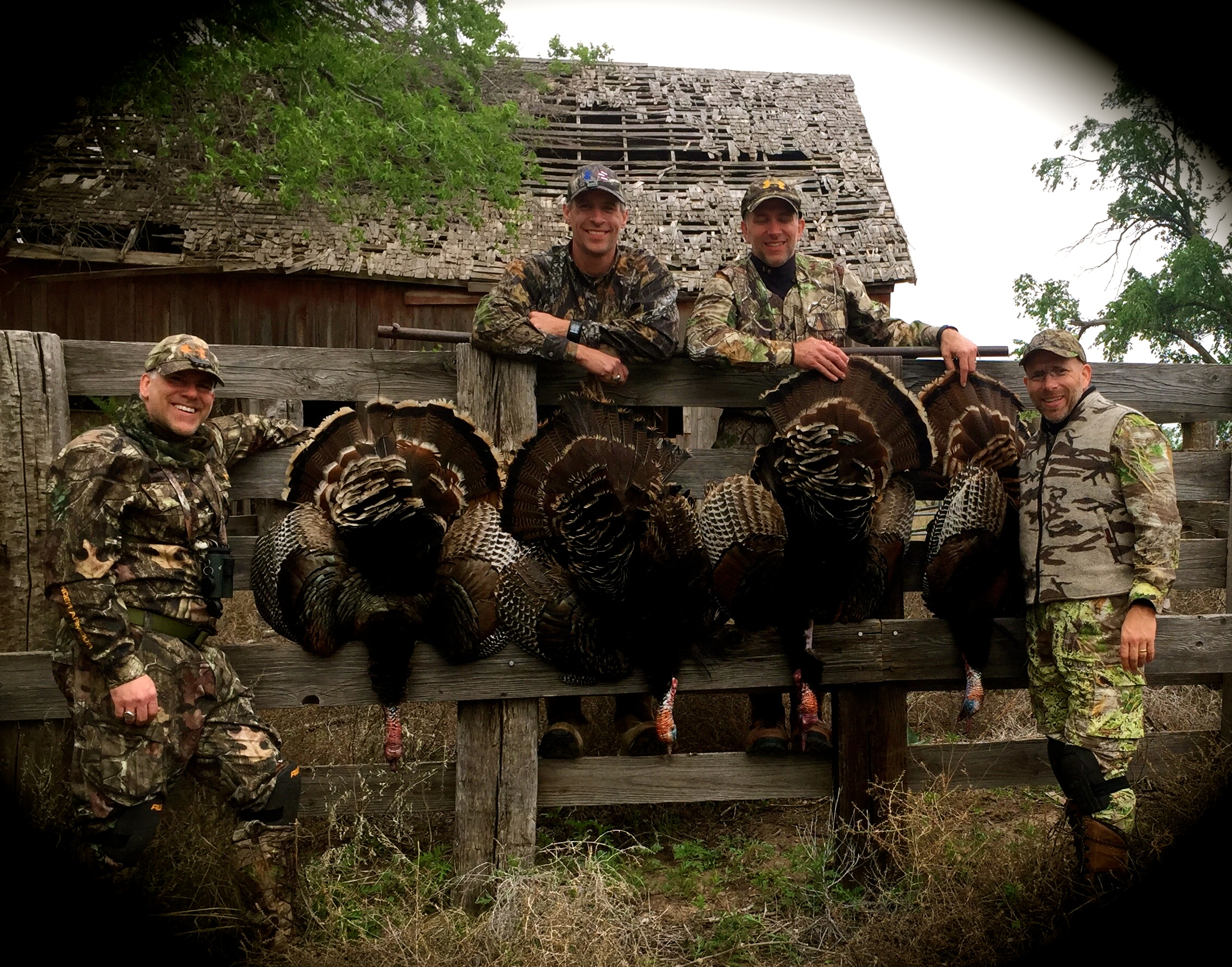 turkey hunting picture