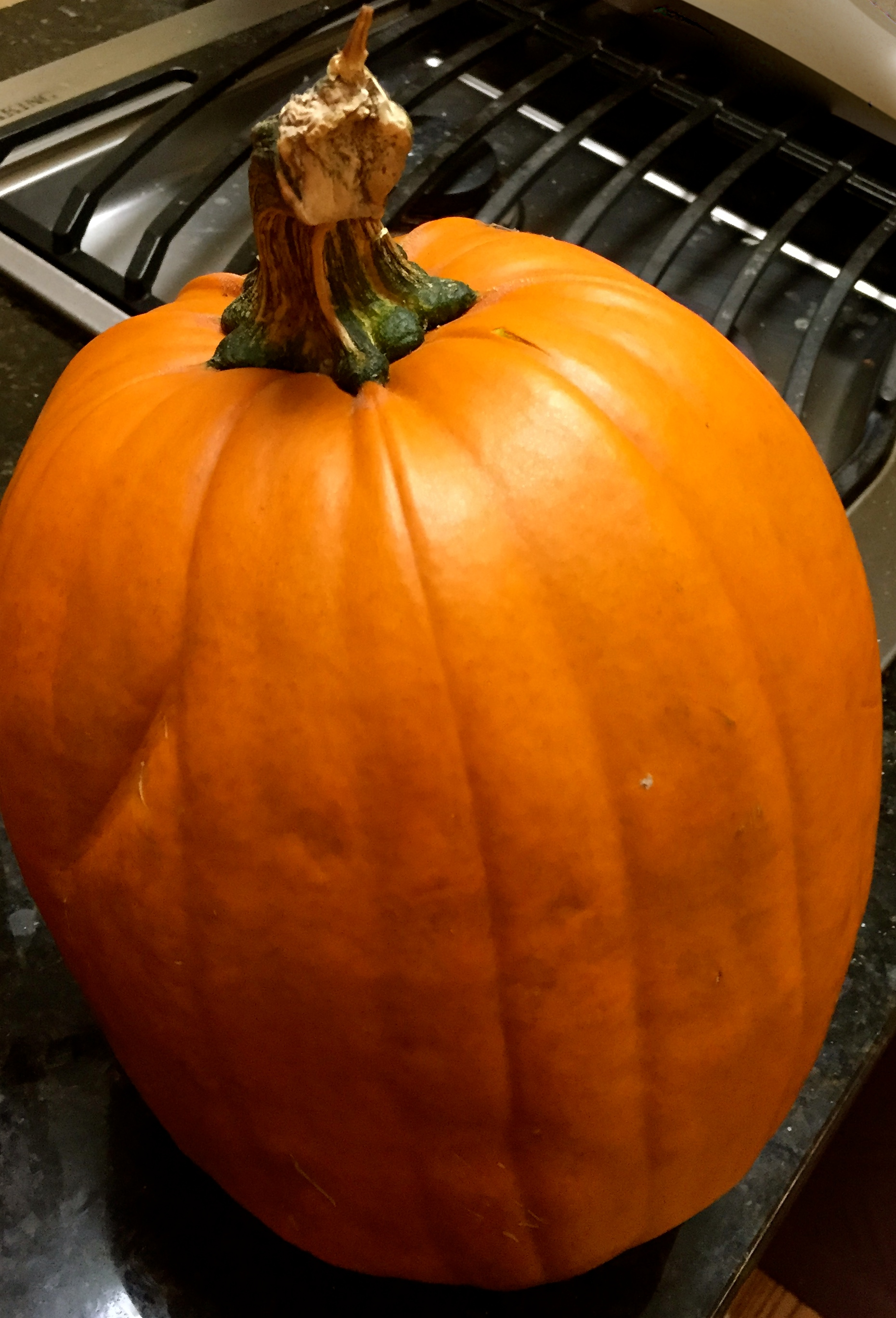 pumpkin-soup-pumpking-whole